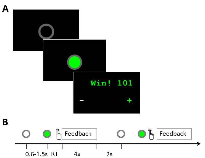 Cooperation game in a NIRS hyperscanning experiment